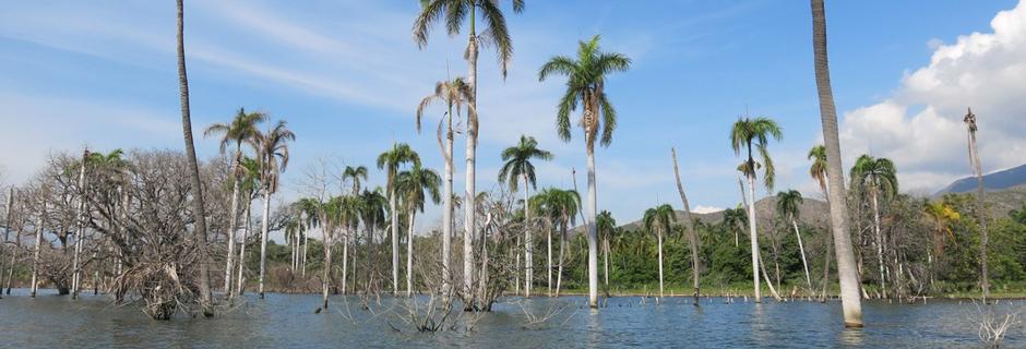 Cient&iacute;ficos completan mapa de lagos Enriquillo y Azu&eacute;i <i><a href='http://www.diariodigital.com.do/articulo.php?id=29823' target='_blank'> by Diario Digital RD</a></i>