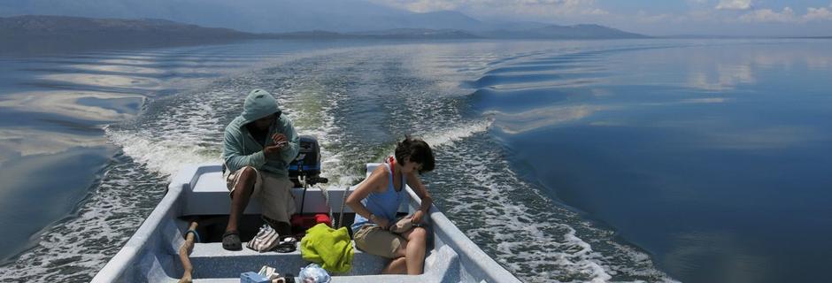 Lagos m&aacute;s grandes del Caribe ven descender su salinidad y aumentar su altura  <i><a href='http://noticias.terra.cl/ciencia/lagos-mas-grandes-del-caribe-ven-descender-su-salinidad-y-aumentar-su-altura,ac8e288dd7811410VgnCLD2000000dc6eb0aRCRD.html' target='_blank'>  by Noticias.terra.cl/</a></i>